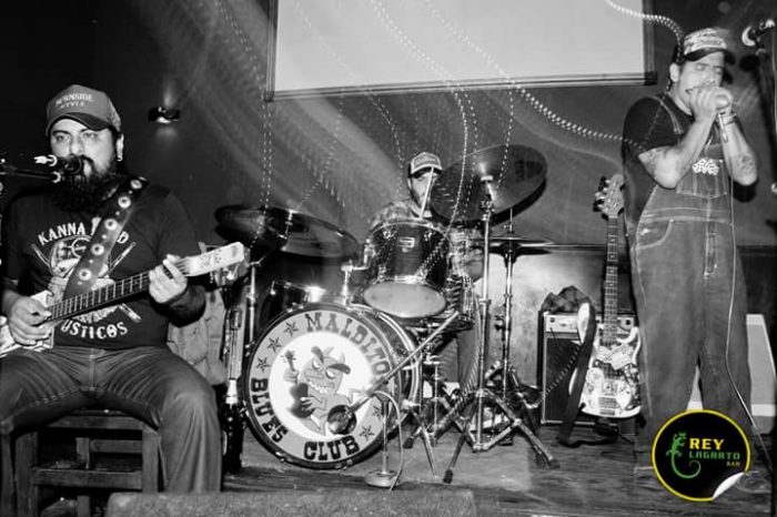 Alligator's Sons