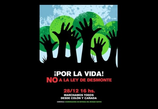 Manifiesto y Marcha en Defensa del Bosque Nativo