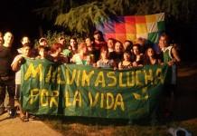 El 2014 según Malvinas Argentinas