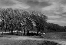 Peón rural
