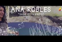 Financiamiento Colectivo para nuevo disco de Ana Robles